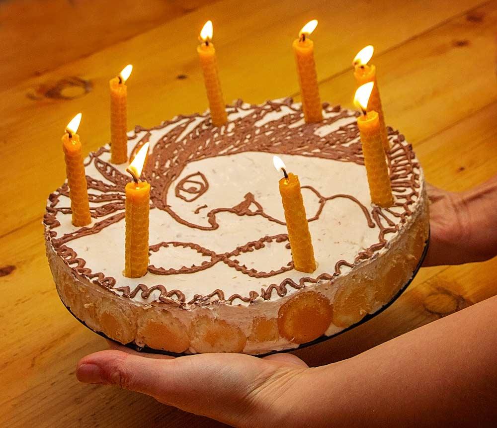 Dortové svíčky